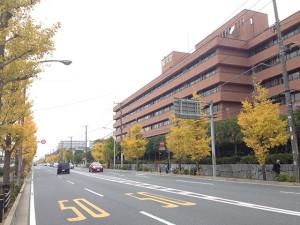 若潮通り 順天堂大浦安病院付近