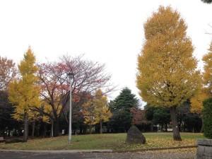 002今川記念公園